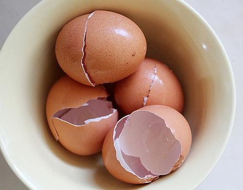 Как удобрять яичной скорлупой