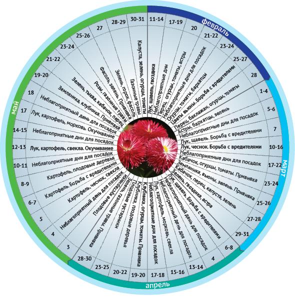 Лунный календарь огородника на июль август