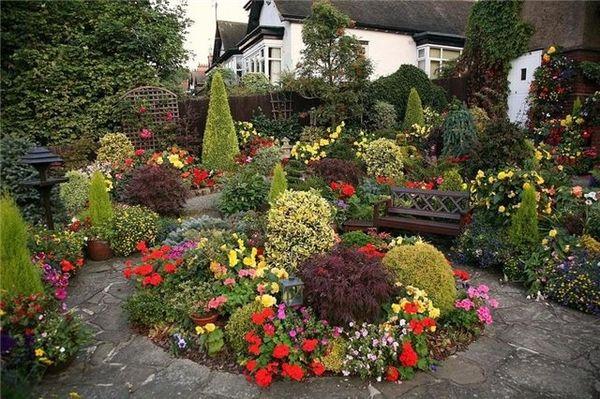 цветы многолетники для сада неприхотливые, долгоцветущие
