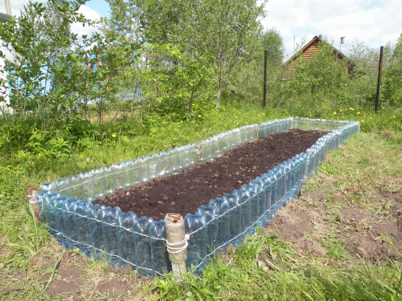 Выращивание огурцов для открытого грунта 41