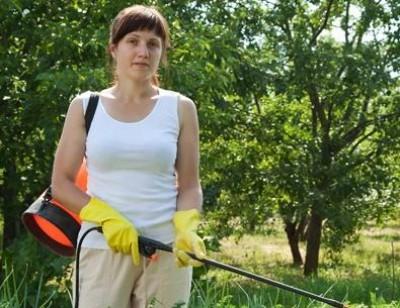 обработка деревьев в саду