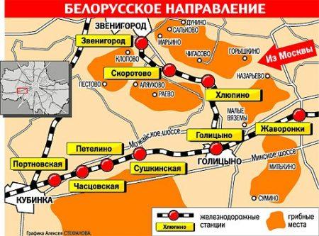Грибные места Подмосковья на карте 2016 белорусское направление