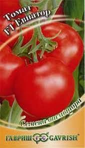 tomat-evpator-otzyvy-o-nem-tex-kto-vyrashhival-ego