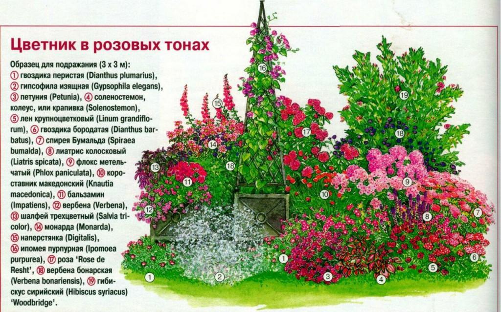 Схема цветника на даче своими руками фото