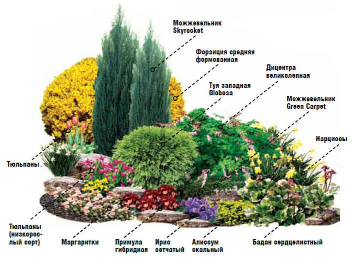 Посадка цветников своими руками фото
