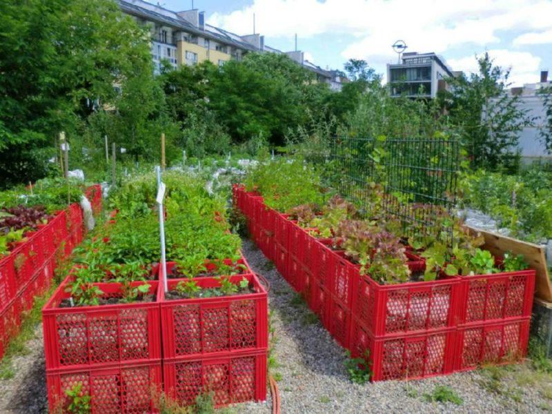 Оформление участка сада своими руками фото 308