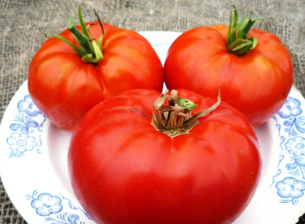 Cемена томатов от коллекционеров