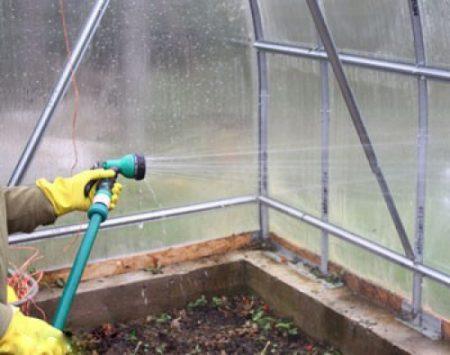 Обработка теплицы осенью от вредителей
