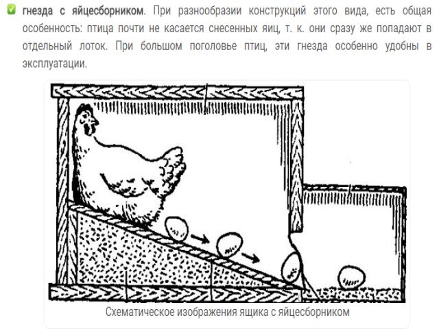 Хитрые гнезда для кур своими руками 39