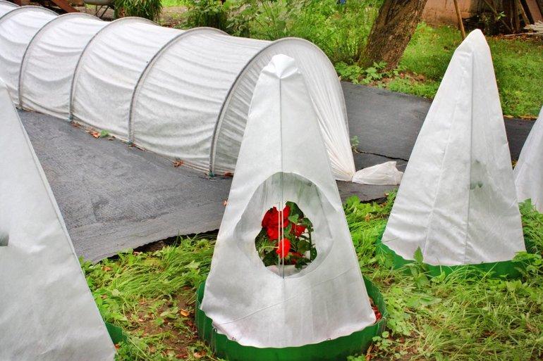 Укрывной материал на зиму для растений