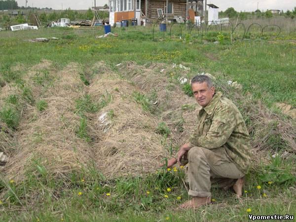 Выращивание картошки без хлопот