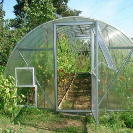 теплица из поликарбоната для помидоров