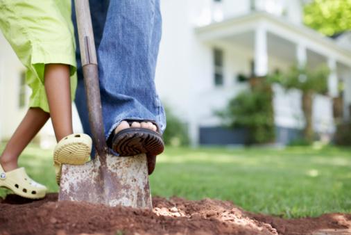 Огород для лентяя, который не копают