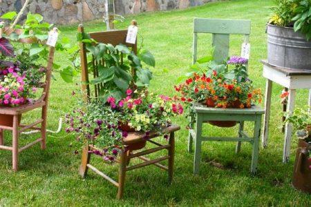 цветы на стульях