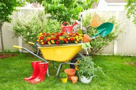 Май 2020: Лунный календарь садовода и огородника