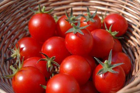 Лучшие сорта томатов на 2017 год
