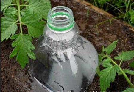 вкопать бутылку