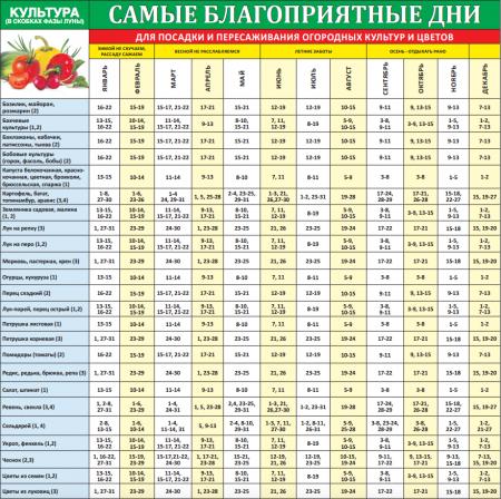 Календарь огородника на 2016 года, посадочные дни для Подмосковья
