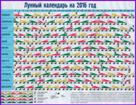 Лунный календарь для посадки семян на рассаду в 2016 году
