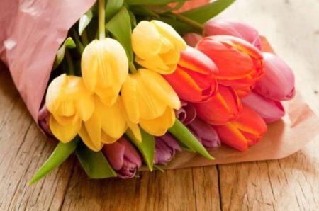 Как сохранить тюльпаны свежими в холодильнике