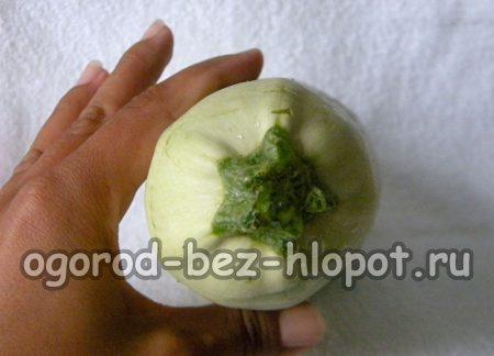 Как вырастить кабачки в открытом грунте
