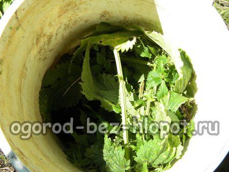 Уложите в емкость 1 кг крапивы