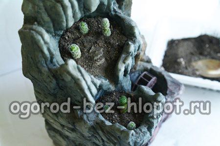4.Делаем в земле углубления и садим  растения