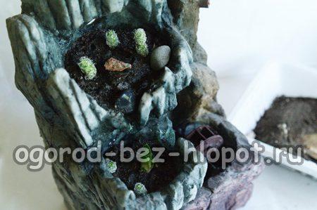 Декорируем композицию из суккулентов камнями