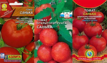 tomat-sanka-urozhanojst-otzyvy