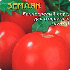 tomat-zemlyak-urozhacnost-foto-otzyvy-kto-sazhal
