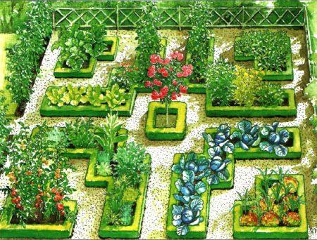 Красивый огород своими руками: как сделать красивые грядки, фото