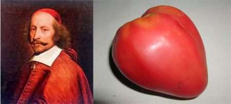 tomat-mazarini-otzyvy-foto-kto-sazhal