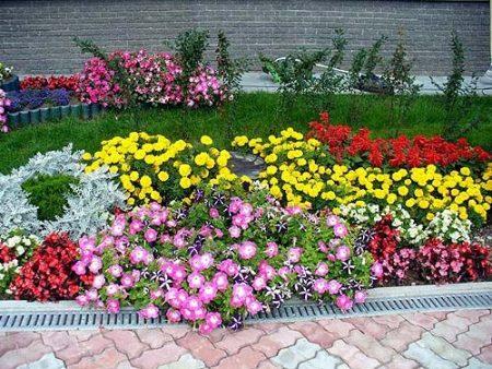 cvetniki-i-klumby-svoimi-rukami-na-dache-foto