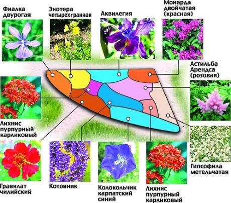 cvetniki-i-klumby-sxemy