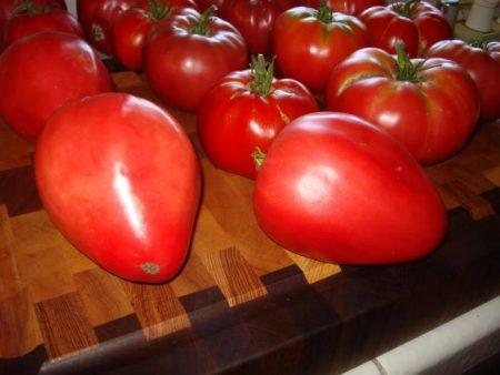 tomat-kardinal
