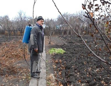 Обработка почвы осенью от болезней