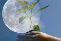 Лунный календарь садовода и огородника на март 2017 года
