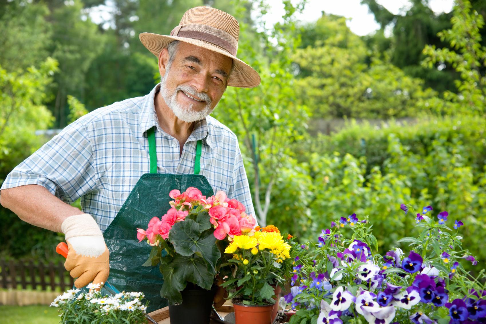 Лунный календарь садовода и огородника на апрель 2017 года