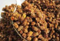 Пчелиная перга: польза и вред, как принимать