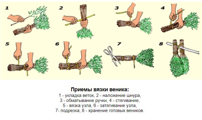 Как сделать дубовый веник для бани