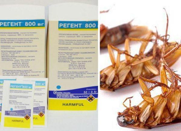 Средство от колорадского жука регент и регент 800: инструкция по применению