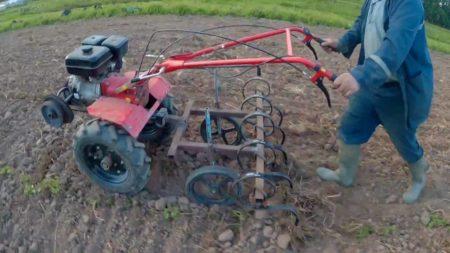Виды культиваторов для междурядной обработки почвы и как их сделать своими руками