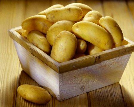 Описание сорта картофеля Зорачка особенности выращивания и ухода