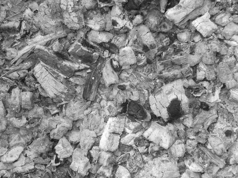 Древесная зола как удобрение – как применять?