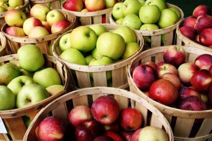 Яблоки разных сортов
