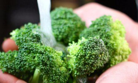 zamorozit-brokkoli-2-450x269.jpg