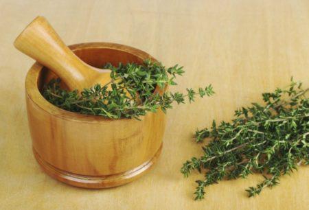 Тимьян: лечебные свойства и противопоказания. Чем заменить тимьян в рецепте