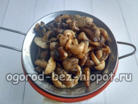 грибы отцедить