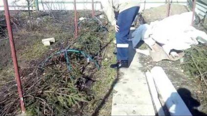 открывать виноград весной