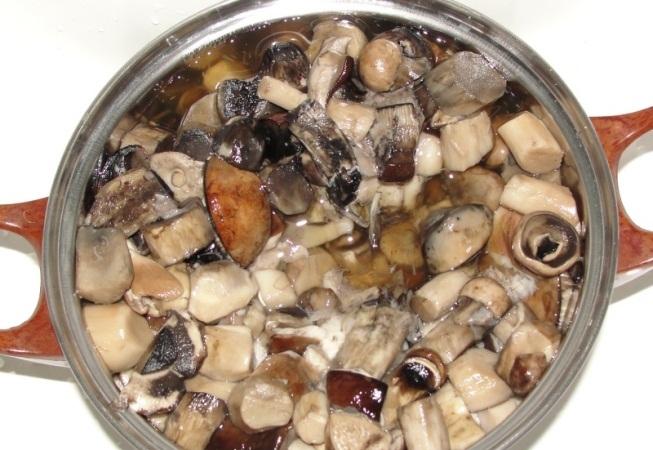 Процесс варки грибов
